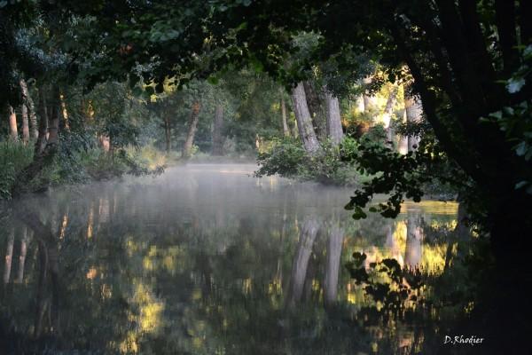 Vue des canaux le matin à l'aube