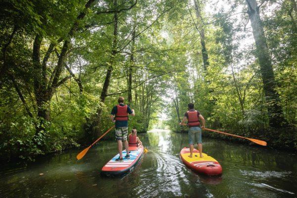 Paddle dans le marais poitevin
