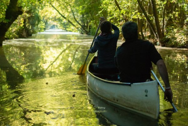 Balade en canoë dans la Venise verte